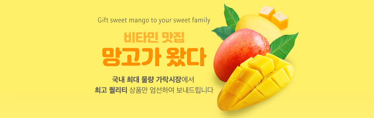 Gift to Korea New Arrivals - Mango