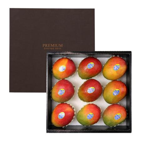 프리미엄 애플망고 선물세트 3.5kg 내외 (9과)