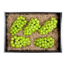 프레시벨리 프리미엄 메론과 샤인머스켓 선물세트 5kg 내외 (메론 2통 + 샤인머스켓 2송이)