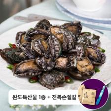 영진수산 완도산 활전복 실속 선물세트 (중) 1.5kg (22-24미)