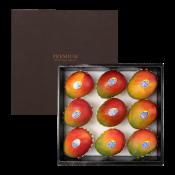 프레시벨리 프리미엄 애플망고 선물세트 3.5kg 내외 (9과)
