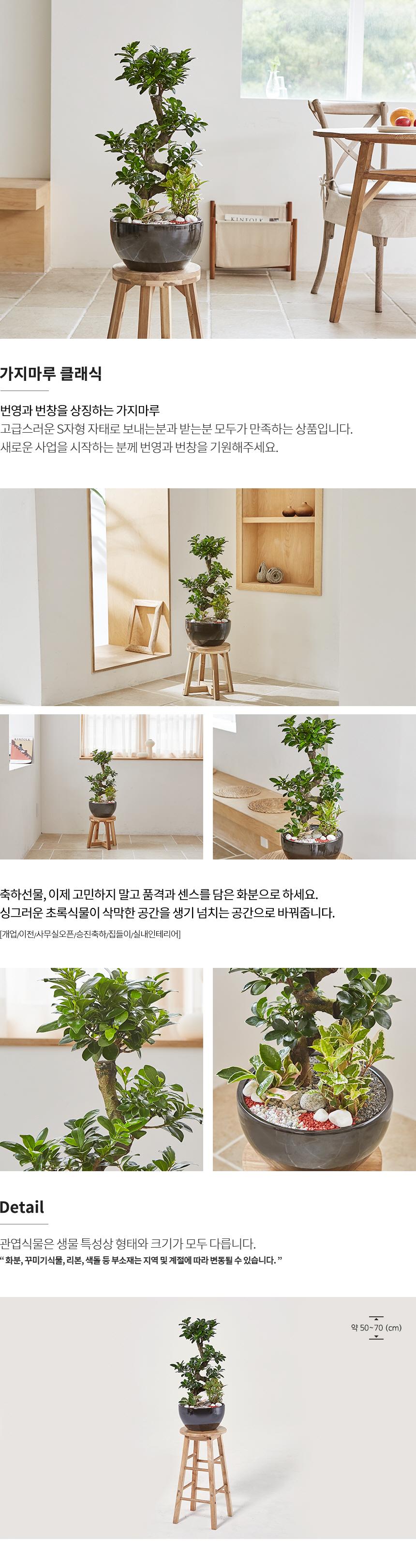 가지마루 클래식 상품설명