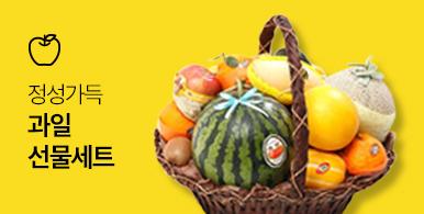 정성가득 과일 선물세트