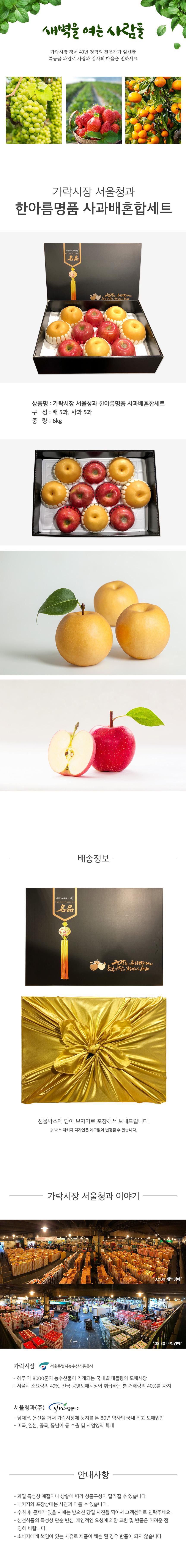 가락시장 서울청과 한아름명품 사과배 혼합세트 (배 5과+사과 5과)
