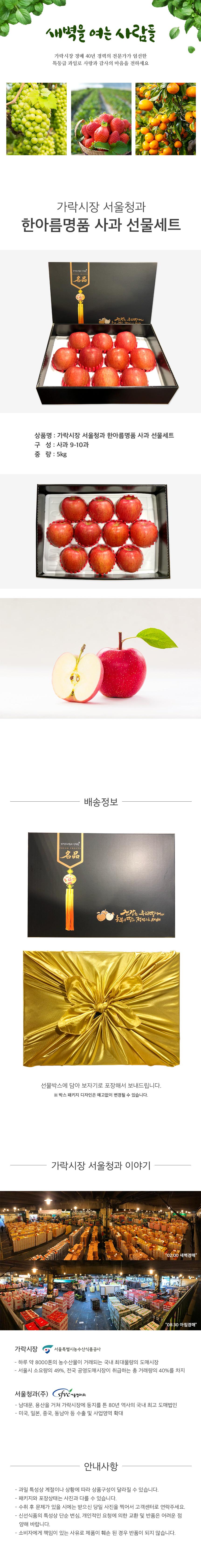 가락시장 서울청과 한아름명품 사과 선물세트 5kg (사과 9-10과)