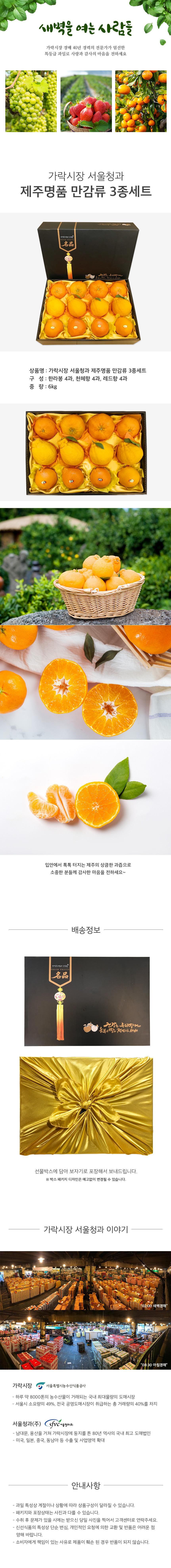 가락시장 서울청과 제주도 만감류 3종세트 6kg (한라봉 4과+천혜향 4과+레드향 4과)