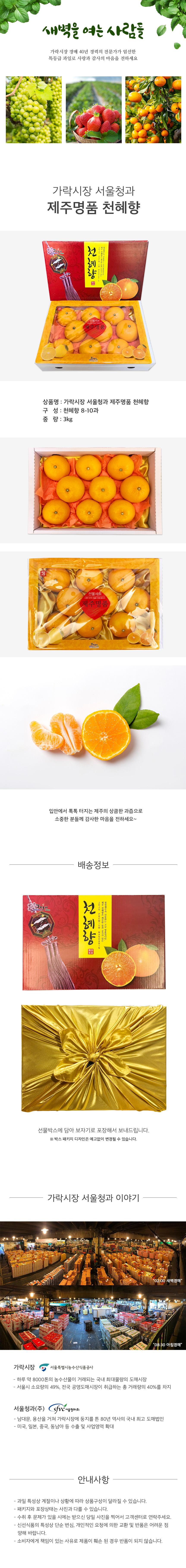 가락시장 서울청과 제주명품 천혜향 세트 3kg
