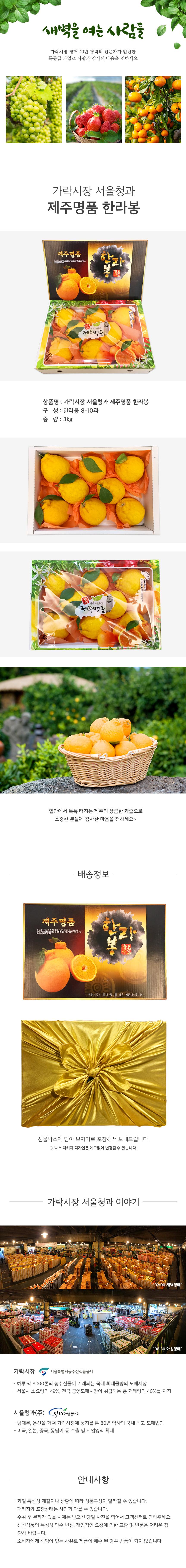 가락시장 서울청과 제주명품 한라봉 세트 3kg