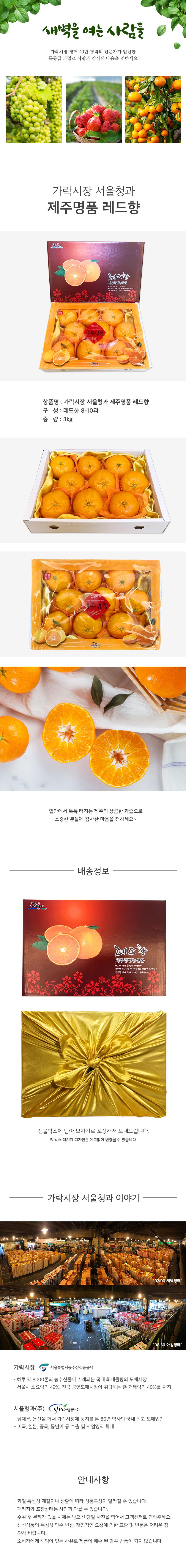 가락시장 서울청과 제주명품 레드향 세트 3kg